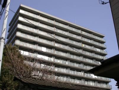 川崎パーク・ホームズの外観写真です。