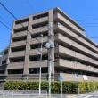 ナイスシティアリーナ横濱新子安の外観写真です